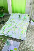 Designers Guild Willow Acacia